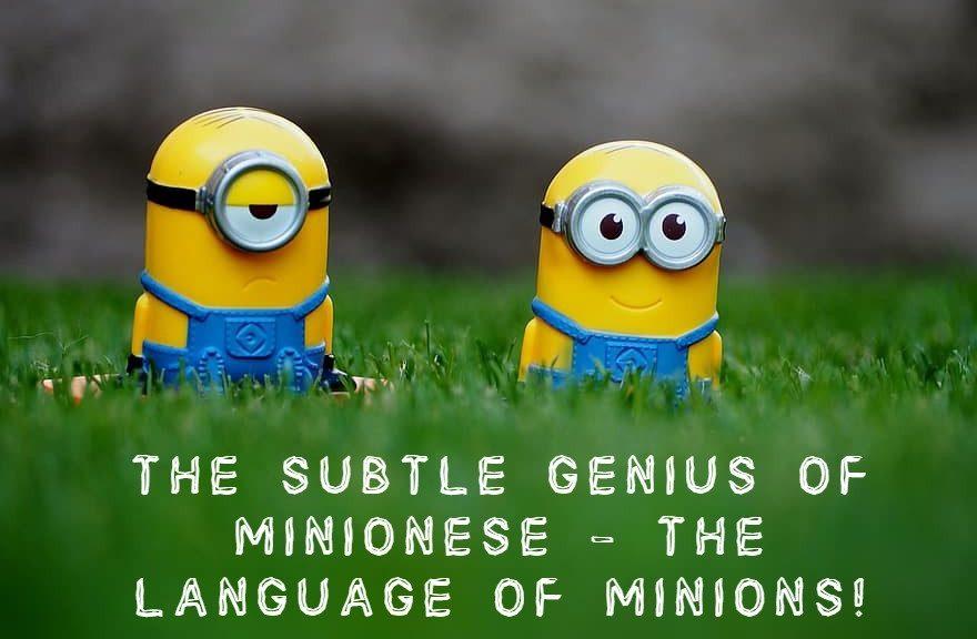 THE SUBTLE GENIUS OF MINIONESE - THE LANGUAGE OF MINIONS!