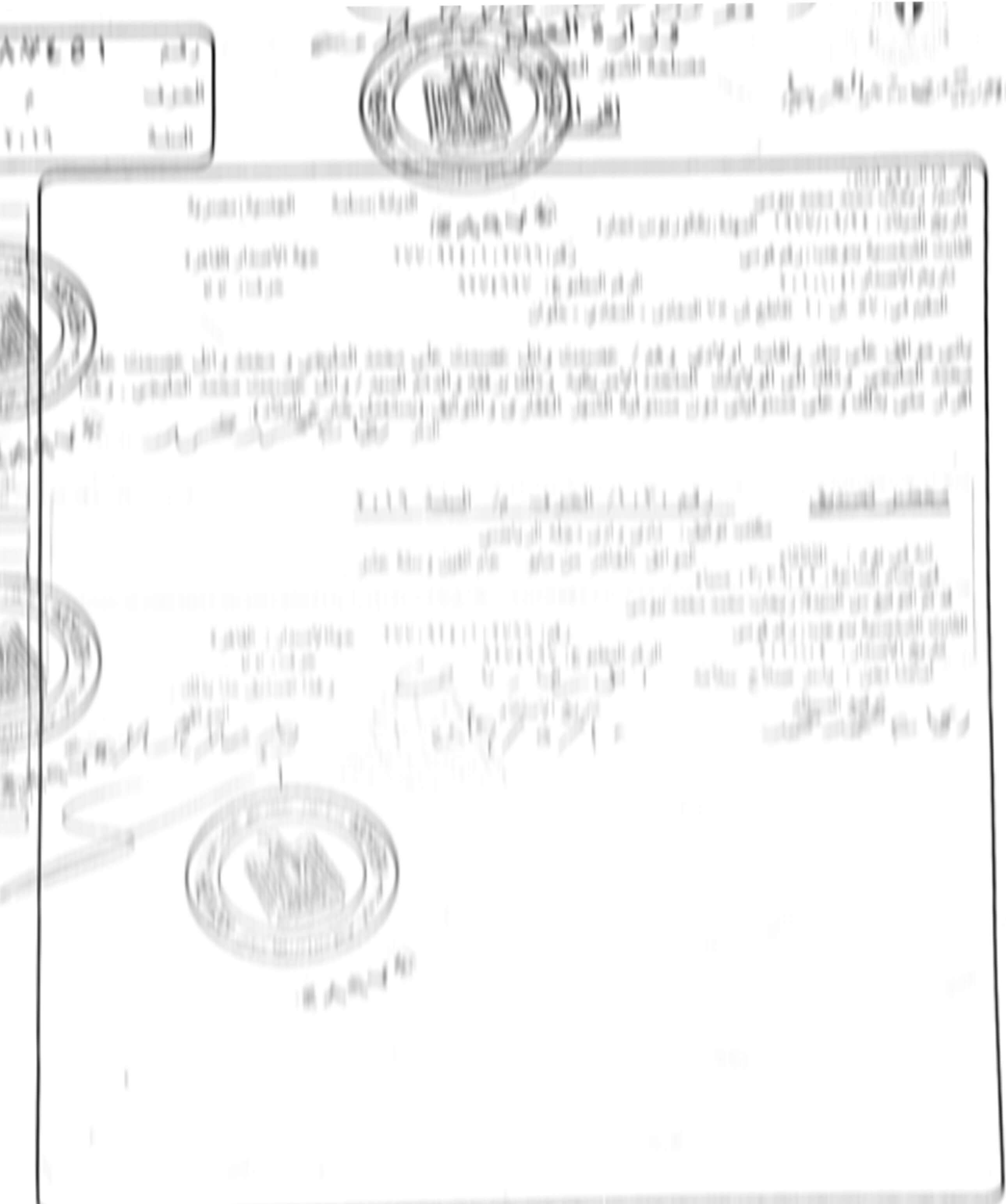 Haitian Death Certificate: Certified Translation Services At $25/page